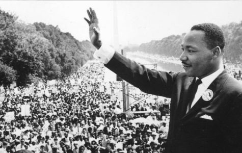 Why is Martin Luther King Jr. important for an Egyptian Immigrant?