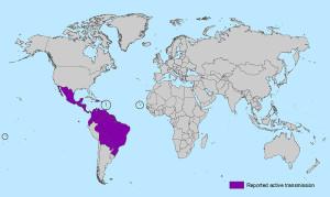 zik-world-map_active_02-01-2016_web