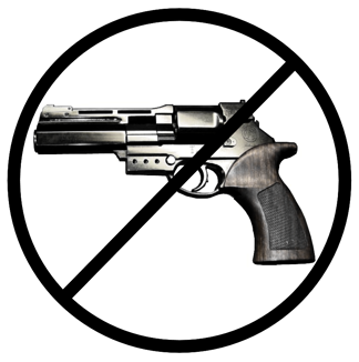 Federalism and the Gun issue