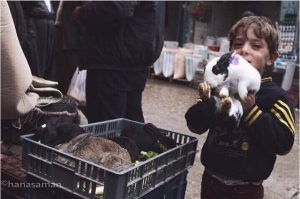 my frend tell me this photos story she say I want take a picture but he said I want buny with me