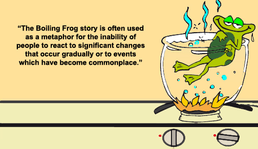 Are you the frog?