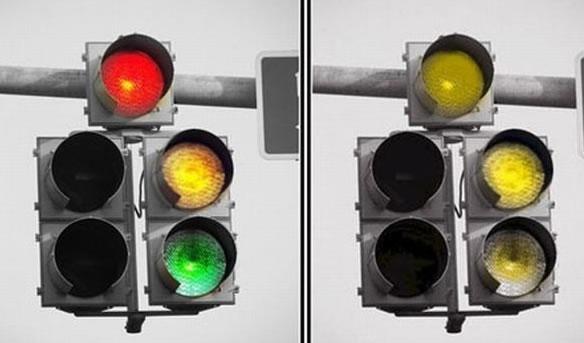 Image result for color blindness