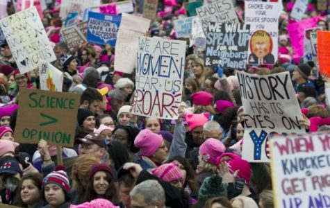 The Women's March; Signs of Democracy