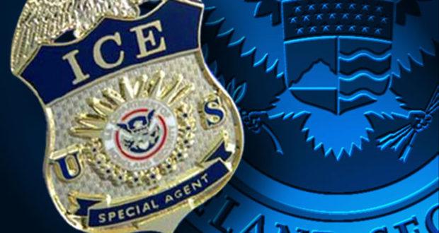 Image result for ICE arrests 2017 political cartoon