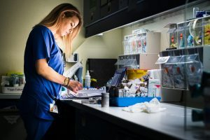 The Perfect Career: Nursing Assistant