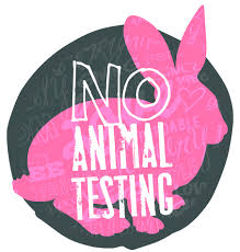 Insight on Cruelty-Free Makeup Brands