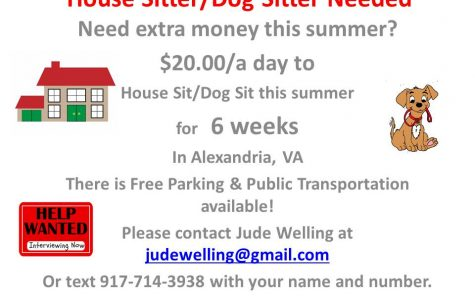Needed:  House Sitter/Dog Sitter in Alexandria, VA