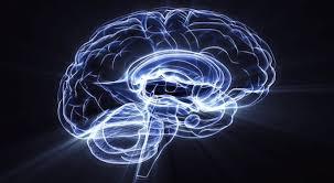La filosofia de la mente