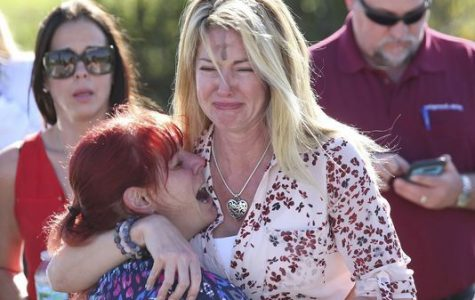 How do we avoid another gun tragedy?