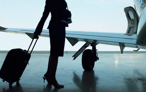 Do you want to be a Flight Attendant?