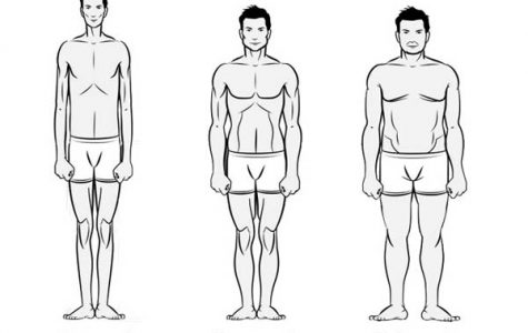 How different body types respond to weightlifting