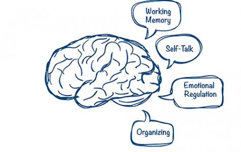 Executive Functioning awareness on the rise