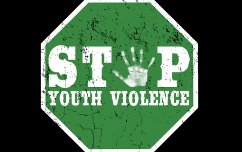 Shooting in manassas; another symptom of the problem of youth violence