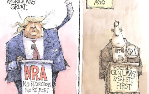 Is the NRA Republican?