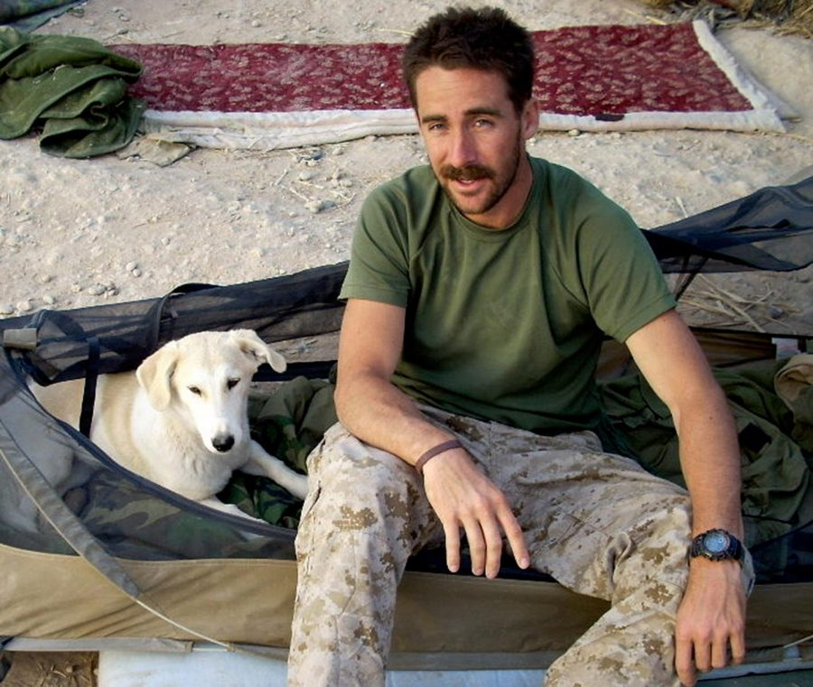 How+mans+best+friend+can+help+Veterans+returning+home