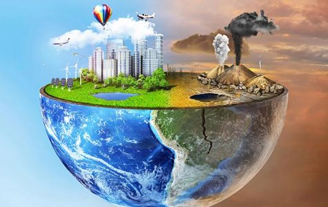 An Investigation of Environmental Problems and Solutions