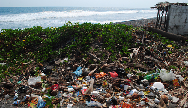 Trash in Paradise: Pollution in El Salvador