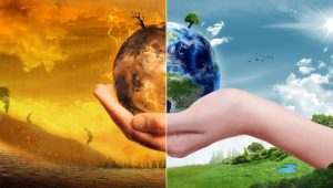 Humanity Destroying Earth: We Must Act