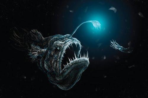 Deep Sea: The Hidden World