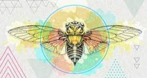 Brood x Cicadas and Their Relation to Arts