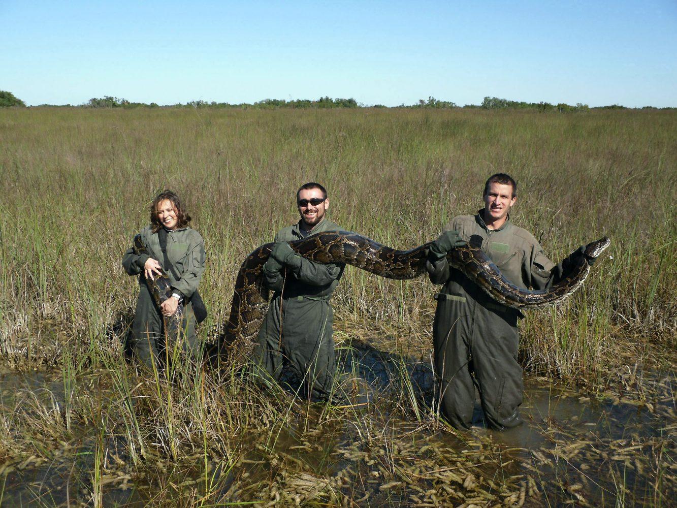 Governing the Natural Environment