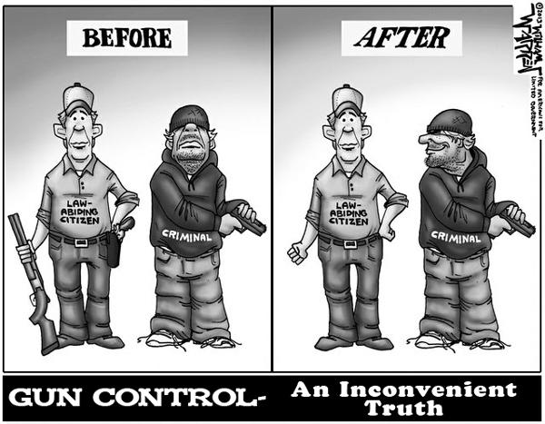 Gun Control Demographics